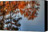 Autumn Photographs Canvas Prints - Nature Reflection Canvas Print by Ester  Rogers