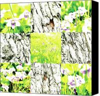 Photo Grids Canvas Prints - Nature Scape 002 Canvas Print by Robert Glover
