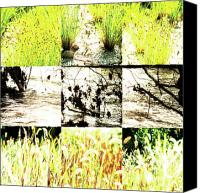 Photo Grids Canvas Prints - Nature Scape 005 Canvas Print by Robert Glover