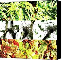 Photo Grids Canvas Prints - Nature Scape 007 Canvas Print by Robert Glover