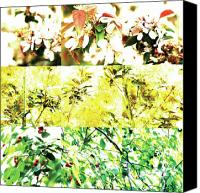 Photo Grids Canvas Prints - Nature Scape 010 Canvas Print by Robert Glover