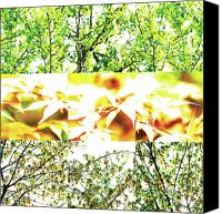 Photo Grids Canvas Prints - Nature Scape 011 Canvas Print by Robert Glover