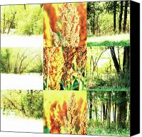Photo Grids Canvas Prints - Nature Scape 013 Canvas Print by Robert Glover