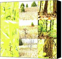 Photo Grids Canvas Prints - Nature Scape 015 Canvas Print by Robert Glover