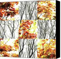 Photo Grids Canvas Prints - Nature Scape 023 Canvas Print by Robert Glover