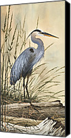 Heron  By James Williamson Painting Canvas Prints - Natures Harmony Canvas Print by James Williamson