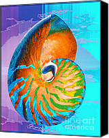 Arts Edge Canvas Prints - Nautilus Blue Canvas Print by H Scott Cushing