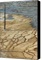 Yellowstone Park Canvas Prints - Near Grand Prismatic Canvas Print by Bruce Gourley