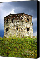 Tourist Attraction Canvas Prints - Nebojsa tower in Belgrade Canvas Print by Elena Elisseeva