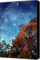 Nebula Canvas Prints - Nebula Treescape Canvas Print by Paul Grand Image