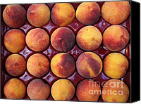 Fruit Markets Canvas Prints - Nectarines - 5D17068 Canvas Print by Wingsdomain Art and Photography