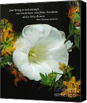 Christian Digital Art Canvas Prints - Need A Little Flower Canvas Print by Methune Hively