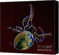 Spider Web Canvas Prints - Neon Spider Canvas Print by Charles Dobbs