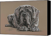 Animal Pastels Canvas Prints - Neopolitan Mastiff Canvas Print by Terry Kirkland Cook