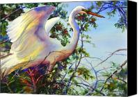 Great Egret Canvas Prints - Nesting egret Canvas Print by Sue Zimmermann