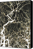 Neurosurgeon Canvas Prints - Neurons Firing Canvas Print by Christopher Kulfan