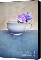 Carnation Canvas Prints - New Life For An Old Coffee Cup Canvas Print by Priska Wettstein