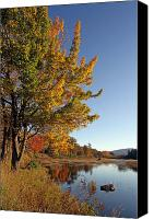 Trees Canvas Prints - New Mills Meadow Pond Canvas Print by Juergen Roth