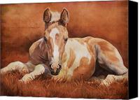 Foal Painting Canvas Prints - New Paint Canvas Print by JQ Licensing