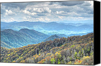 Mary Anne Baker Canvas Prints - Newfound Gap Cascades Canvas Print by Mary Anne Baker