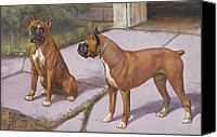 Boxer Dog Canvas Prints - Ngm194112_778-lo, Canvas Print by National Geographic