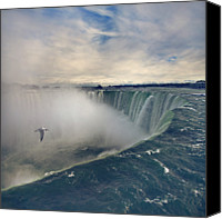 Seagull Photo Canvas Prints - Niagara Falls Canvas Print by Istvan Kadar Photography