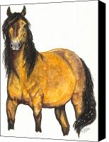 Horse Canvas Prints - Nifty Canvas Print by Kristen Wesch