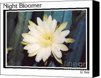 Cereus Canvas Prints - Night Bloomer Posters Canvas Print by Heather Kirk