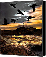 Geese Canvas Prints - Night Flight Canvas Print by Bob Orsillo