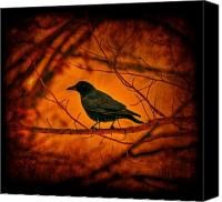 Black Crow Canvas Prints - Night Guard Canvas Print by Evelina Kremsdorf