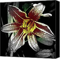 Day Lily Flowers Canvas Prints - Night Lily 2 Canvas Print by Sarah Loft