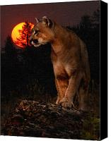 Mountain Lion Canvas Prints - Night of the Cougar Canvas Print by Wade Aiken