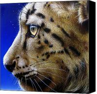 Jurek Zamoyski Canvas Prints - Nina the Snow Leopard Canvas Print by Jurek Zamoyski
