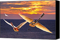Rock Angels Canvas Prints - No Nostalgia Canvas Print by Eric Kempson