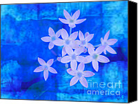 Blue Rose Prints Canvas Prints - No Red White and Blue Canvas Print by John Rosa