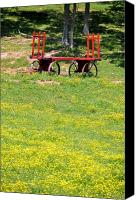 Country Scenes Canvas Prints - None Of Your Red Wagon Canvas Print by Jan Amiss Photography