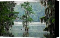 Spooky Photo Canvas Prints - North Florida Cypress Swamp Canvas Print by Rich Leighton