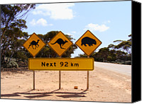 Kangaroo Canvas Prints - Nullarbor Desert Road Signs Canvas Print by Elena Martinello