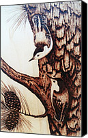 Forest Pyrography Canvas Prints - Nuthatch Heaven Canvas Print by Susan Rice
