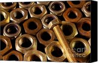 Construction Canvas Prints - Nuts and Screw Canvas Print by Carlos Caetano