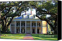 Live Oaks Canvas Prints - Oak Alley Plantation Canvas Print by Carol Groenen