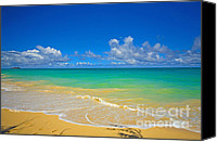 Featured Special Promotions - Ocean View Canvas Print by Cheryl Young