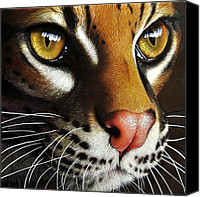 Jurek Zamoyski Canvas Prints - Ocelot Canvas Print by Jurek Zamoyski