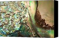 Abalone Seashell Canvas Prints - Oil Spill Canvas Print by Joy Gerow