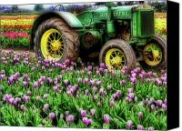 Farm Equipment Canvas Prints - Old and New Canvas Print by Bonnie Bruno