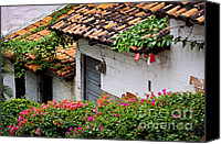 Flowers Garden Canvas Prints - Old buildings in Puerto Vallarta Mexico Canvas Print by Elena Elisseeva