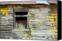 Cabin Window Canvas Prints - Old Dilapidated Window Canvas Print by Matt Tilghman