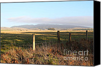 Point Reyes National Seashore Canvas Prints - Old Fence And Landscape Along Sir Francis Drake Boulevard At Point Reyes California . 7D9965 Canvas Print by Wingsdomain Art and Photography