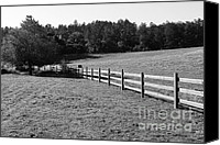 Point Reyes National Seashore Canvas Prints - Old Fence And Landscape At Point Reyes California . 7D9812 . Black and White Canvas Print by Wingsdomain Art and Photography
