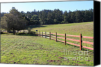 Point Reyes National Seashore Canvas Prints - Old Fence And Landscape At Point Reyes California . 7D9812 Canvas Print by Wingsdomain Art and Photography
